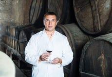 Fabrikssommelier som kontrollerar kvalitet av vin Arkivbild