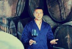 Fabrikssommelier som kontrollerar kvalitet av vin Arkivbilder