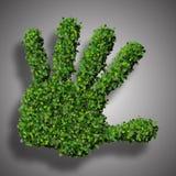 Fabriqué à la main des feuilles vertes Image stock