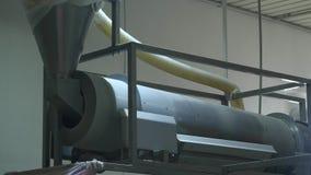 Fabryczna produkcja słodkiej kukurudzy kije zdjęcie wideo