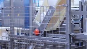 Fabryczny konwejer dla produkcja sera produktów Fabrykować nabiały zbiory