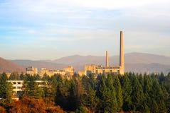 fabryczny las Obrazy Stock