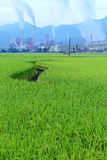 Fabryka po środku zielonej ziemi uprawnej na chmurnym dniu Obraz Royalty Free