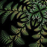 Fabulous asymmetrical pattern of the leaves on black background. Royalty Free Stock Image