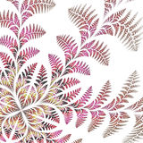 Fabulous asymmetrical pattern of the leaves on white background. Stock Images
