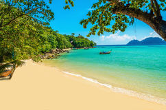 Fabulous beach with exotic plants and white sand Stock Image