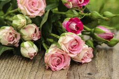 Fabulous bouquet of colorful roses Stock Photo