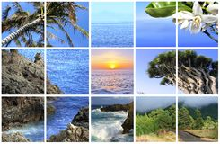 Fabulous Canary Island La Palma Royalty Free Stock Photos