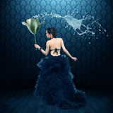 Fabulous Fairy royalty free stock photo