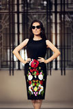 Fabulous Fashionable Woman With Dark Sunglasses Stock Images