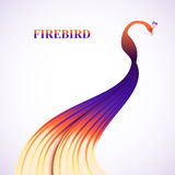 Fabulous feather Firebird Royalty Free Stock Photo