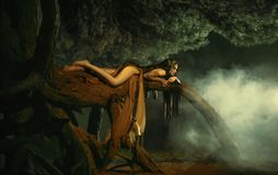 A fabulous; forest nymph Gyana. A fabulous, forest nymph with long hair lies on a tree branch with an aggressive look. Background dark night and fog. Mythical Royalty Free Stock Photography
