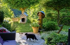 A fabulous garden with a water pump, chairs and walking cat. A fabulous garden with a water pump, chairs and walking black cat stock images