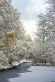 Fabulous landscape of winter forest. Frozen pond Stock Photography