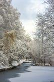 Fabulous landscape of winter forest. Frozen pond Stock Photography
