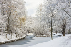 Fabulous landscape of winter forest. Frozen pond Royalty Free Stock Photography