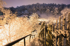 Fabulous night winter forest in the snow. Winter time. Heavy snowfall Royalty Free Stock Image