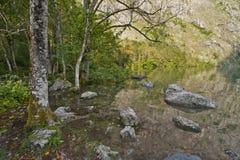 Fabulous Obersee Lake Royalty Free Stock Photo