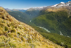Fabulous scenery in New Zealand Royalty Free Stock Photos