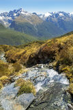 Fabulous scenery in New Zealand Royalty Free Stock Photography