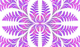 Fabulous symmetric pattern of the leaves in purple. Stock Photos