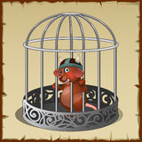 Fabulous wild animal in a steel cage in captivity Royalty Free Stock Images