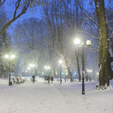 Fabulous winter city park Royalty Free Stock Photography