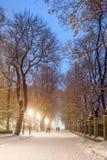 Fabulous winter city park Stock Image