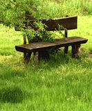 Fabulous wooden bench Stock Photo