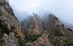 The fabulous world of the Crimean reserves. Trees on the tales, shrouded in mist, The Lost World stock photos