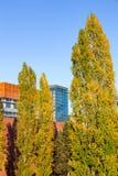 Facad moderno di vetro di architettura delle costruzioni degli alti alberi in aumento alti Fotografie Stock Libere da Diritti
