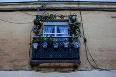 facade stock foto's