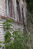 Facade of the old dilapidated house. The facade of an abandoned brick house is overgrown with plants. On windows the metal grid royalty free stock image