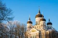 Facade of the Alexander Nevsky Cathedral in Tallinn Royalty Free Stock Photos