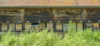 Facade of a beehouse. With lots of apiaries in sunny ambiance Royalty Free Stock Photos