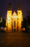 Facade of the Cathedral  Church at night Royalty Free Stock Images