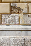 Facade damaged by moisture. Detail of the facade of an historic building damaged by moisture, portrait cut Royalty Free Stock Photography