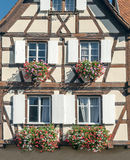 Facade with flowers Royalty Free Stock Image