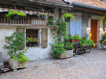 Facade of french house with door and window decorated with fresh plants Royalty Free Stock Photos