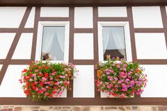 Facade of half-timbered house with geranium flowers royalty free stock image