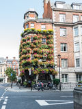 Facade of The Masons Arms pub, west London, with flower boxes ad Stock Images