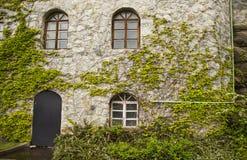 Facade. The nice facade of  old house Royalty Free Stock Photo