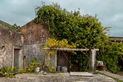 Facade of One Rural House, Almost Covered With Plants stock photography