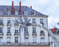 Facade and roof of buildings in Nantes. royalty free stock image