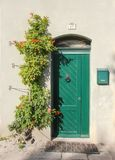 Facade with sweet old green door with lion doorknob and green mailbox, Near on the wall there is beautiful creeper royalty free stock image