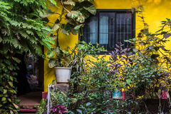 Facade of a yellow house in Arambol, North Goa, India Royalty Free Stock Image