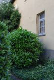 Facades and details of a vintage backyard. In south germany historical city Stock Photo