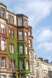 Facades in Edinburgh. Facades covered with ivy in the streets of Edinburgh Stock Photography