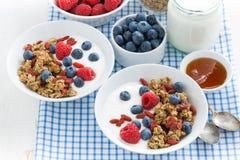Faccia colazione con granola, le bacche fresche, il miele ed il yogurt Fotografia Stock