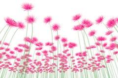 Faccia i raggi x dell'immagine di un fiore isolato su bianco, la dalia royalty illustrazione gratis